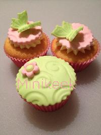 Butterfly pink/green
